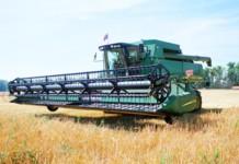 Правительство Новосибирской области одобрило новые направления областной государственной программы по развитию сельского хозяйства