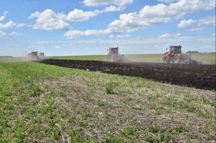 В Колыванском районе Новосибирской области вместе с селекционно-генетическим центром появятся газ и новая дорога