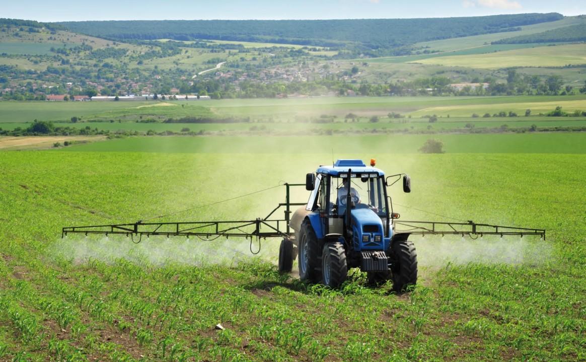 Россельхозбанк почти втрое увеличил выдачи льготных кредитов агробизнесу Новосибирской области