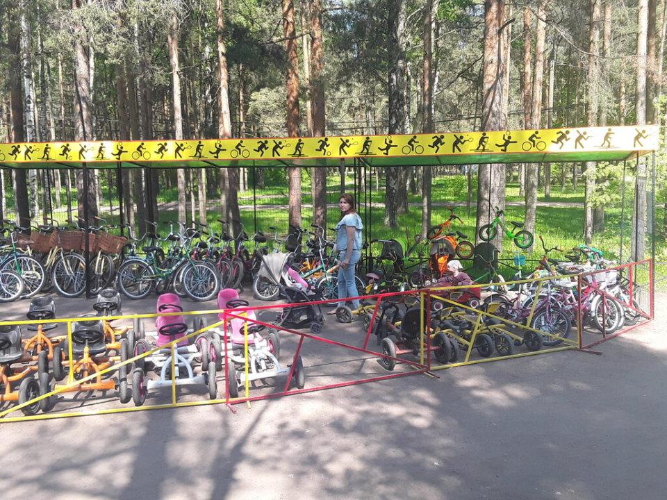 Частные пункты проката спортинвентаря в Кузбассе впервые получат господдержку в рамках нацпроекта