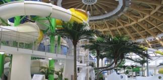 Одна из компаний застройщика новосибирского аквапарка признана банкротом