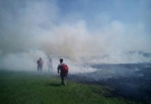 Более 60 населенных пунктов Иркутской области окутал дым от лесных пожаров