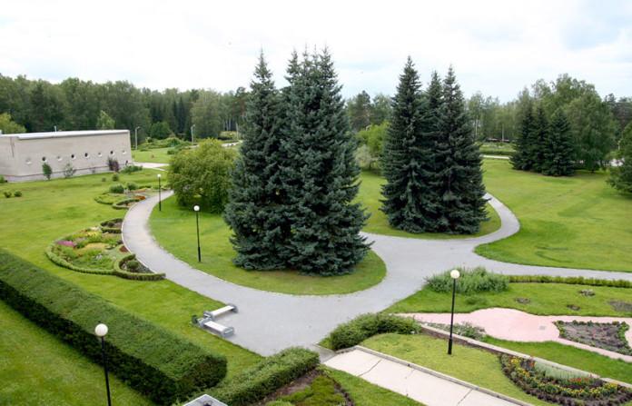 Ботанический сад СО РАН поможет в озеленении Новосибирска