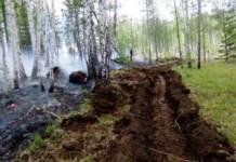 Лесные пожары продолжают бушевать на территории Сибири