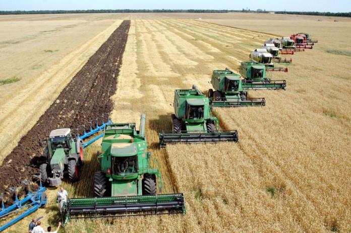 Миниатюра для: Новосибирская область представила в минсельхоз РФ проекты развития сельских территорий