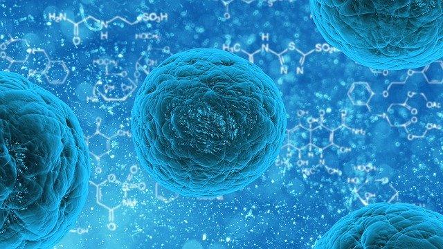 Миниатюра для: В НГУ придумали способ уничтожения коронавируса за 40 секунд