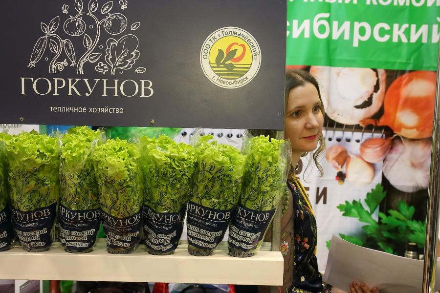 """Почему власти Кольцово и бизнесмены не смогли найти """"земельный"""" компромисс? - Изображение"""