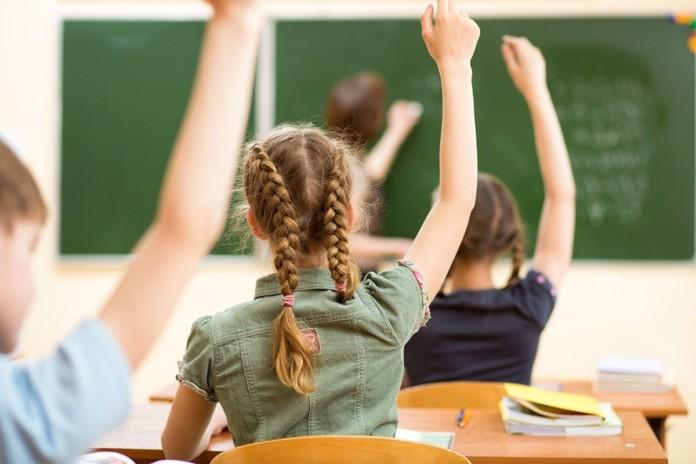 Миниатюра для: Досрочные выборы в Новосибирской области не помешают урокам в школах