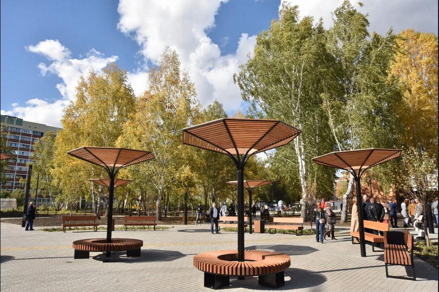 На Затулинке в Новосибирске открылся дисперсный парк - Фотография