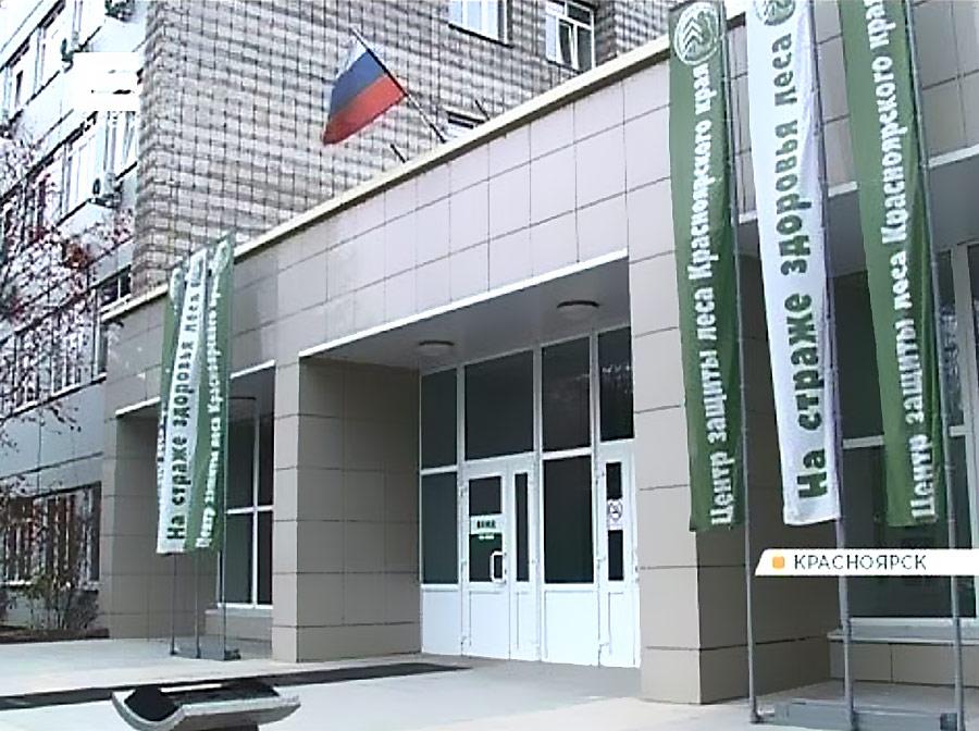 В министерстве лесного хозяйства Красноярского края силовики проводят обыски