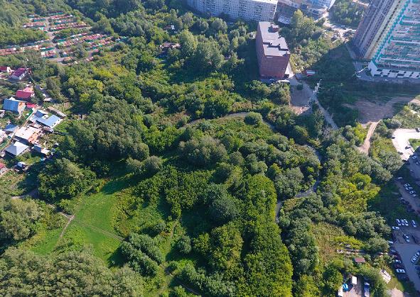 В Новосибирске появится ландшафтный парк «Каменка» с экотропами и смотровой площадкой - Фото