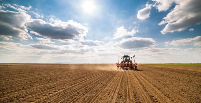 Миниатюра для: Россельхозбанк на 15% увеличил кредитование сезонных работ в Новосибирской области