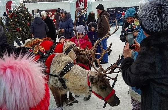Миниатюра для: Мэр Новосибирска: Снежных городков и фейерверков на Новый год не будет