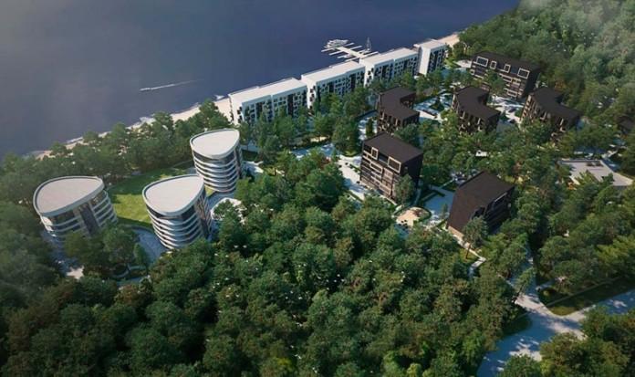 Миниатюра для: Как будет решаться вопрос застройки лесных зон в черте Новосибирска?