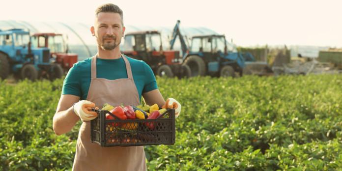Миниатюра для: «Россельхозбанк» создаёт всероссийскую базу фермерских хозяйств