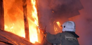Пожар в Карасукском районе