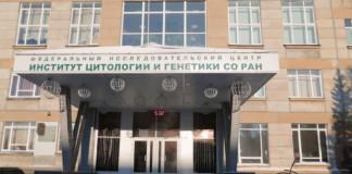 Институт цитологии и генетики