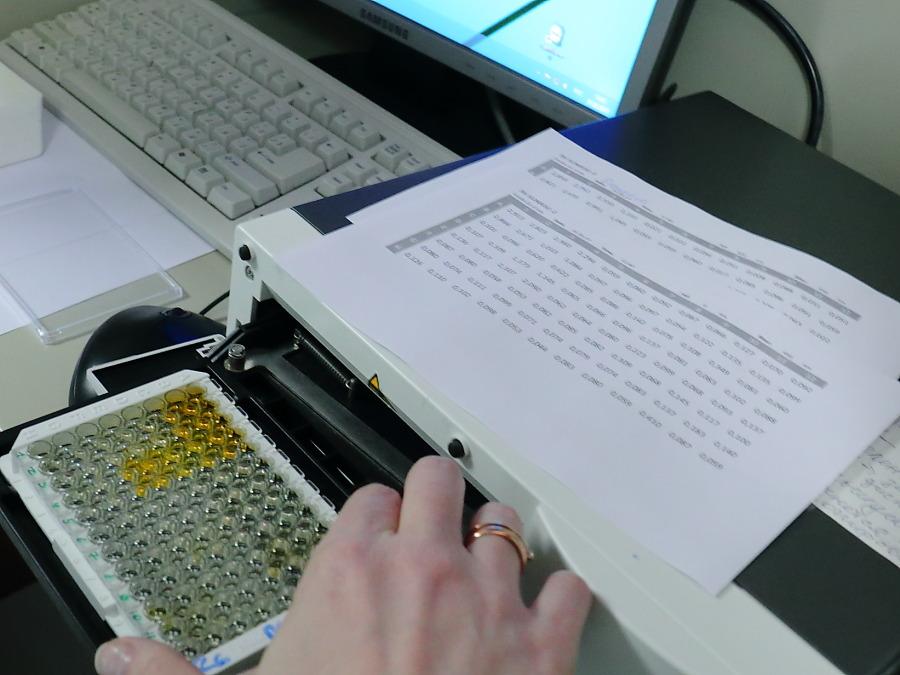 Новые данные об эффективности вакцины новосибирского «Вектора»