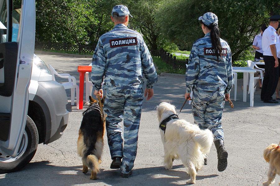 Сапёры, эвакуация, минирование, собаки