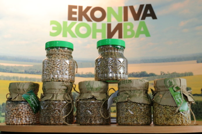 Миниатюра для: «ЭкоНива» готовится к продаже долей компаний-владельцев новосибирских активов