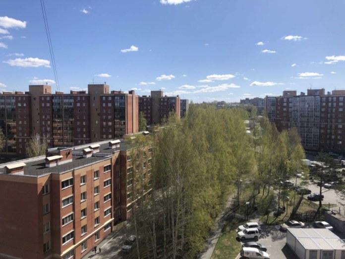 потепление в Новосибирске