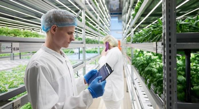 Миниатюра для: Новосибирская компания построит ферму в Норвегии