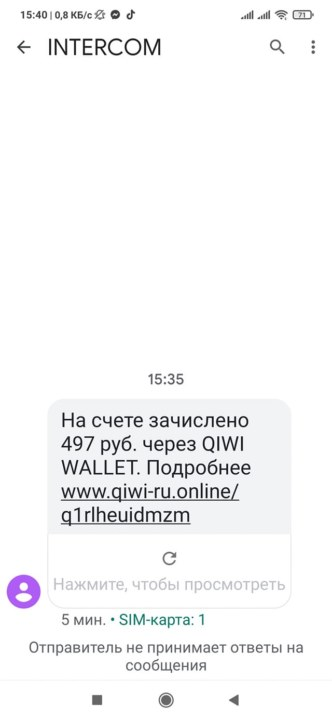 Новосибирский депутат Госдумы пожаловалась на подозрительный перевод - Фотография