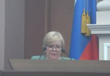 Выделенный бюджет на проведение Дня города будет направлен на первоочередные расходы Новосибирска.
