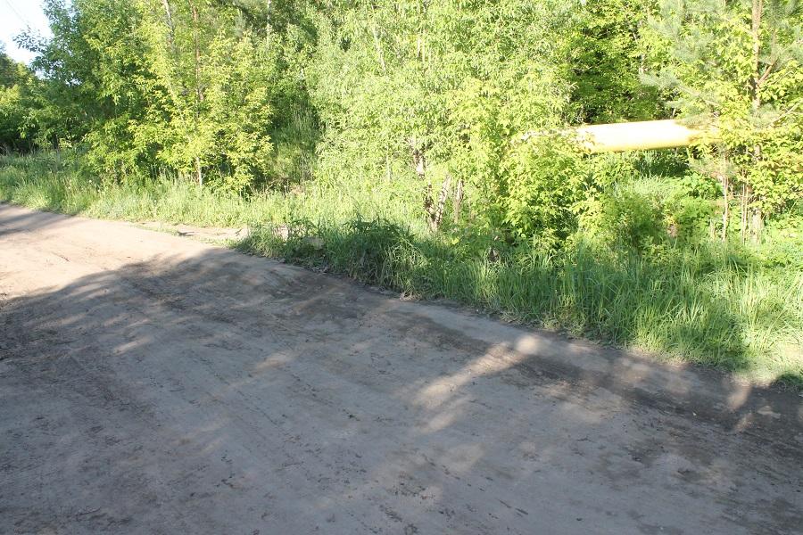 Газовая труба проходит в непосредственной близости от предполагаемого второго варианта дороги ко 2-й Ельцовке.