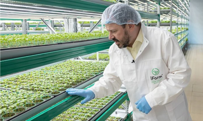Миниатюра для: Новосибирская компания построит ферму в Катаре