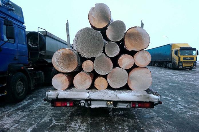 Древесина, вырубки, лес