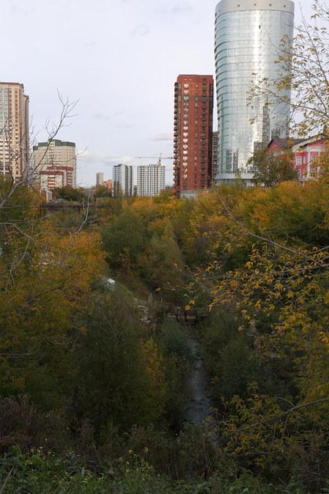 В центре Новосибирска разобьют новый парк в пойме реки 1-я Ельцовка - Фотография