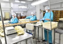 Районы Новосибирской области увеличивают мощности переработки молока.