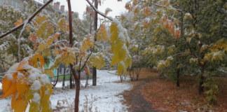 Прогноз погоды Новосибирская область