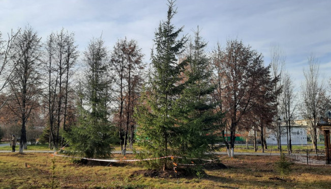 Благоустройство парка в Бердске